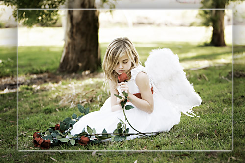 valentines-2008060-half-sepia.jpg